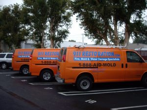 Water Damage Restoration in Arlington