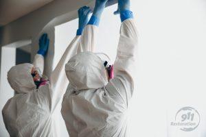 911Restoration-professional-mold-removal